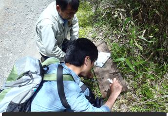 定期的にイタチなどの生態調査や勉強会を実施しています。